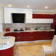 """Кухня """"Памела"""", цвет - вишневый, белый."""