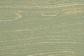 Камыш-зол-патина