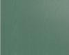 дуб-бирюзовый