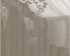 карамельное-дерево